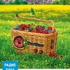 Радио Дача - Пермь (Официальная Группа)