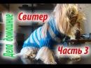 Свитер для собаки.Часть3.Одежда для собак своими руками на канале''Дела домашние''.