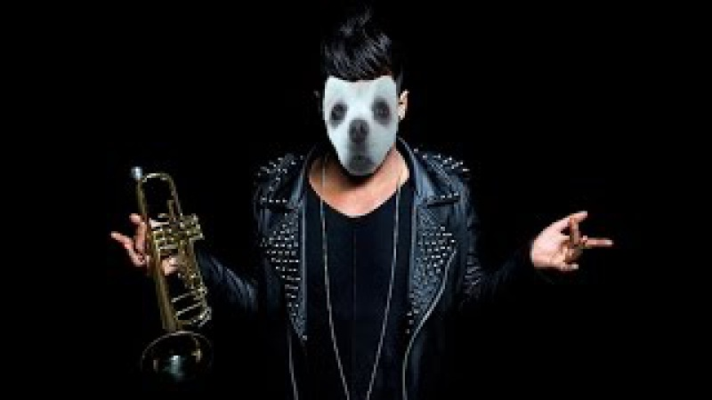 Gabe the dog Timmy Trumpet