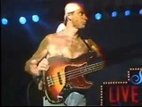 Jaco Pastorius The Chicken - Live Under The Sky'1984 Gil Evans nite in japan