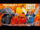 Dance Battle Turkeys VS People / BIRDS VS PEOPLE