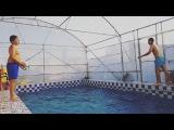 afshin.fayez video