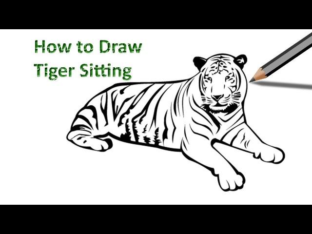 How to Draw a Tiger Sitting www.youtube.com/watch?v=n5FFU05pvSsindex=15list=PLmVh2idamxXMZvkB4mgKmEeiux_no6gsb