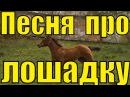 Далеко далеко ускакала в поле молодая лошадь / Детские песни для детей