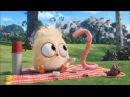 Энгри Бердс мультики для детей Видео про ЗЛЫЕ ПТИЧКИ Сборник Angry Birds funny cartoons for kids
