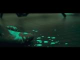 Elliot Moss  Slip (Official Video)