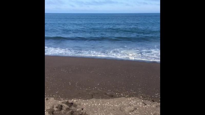 Тихий Океан и Брабус