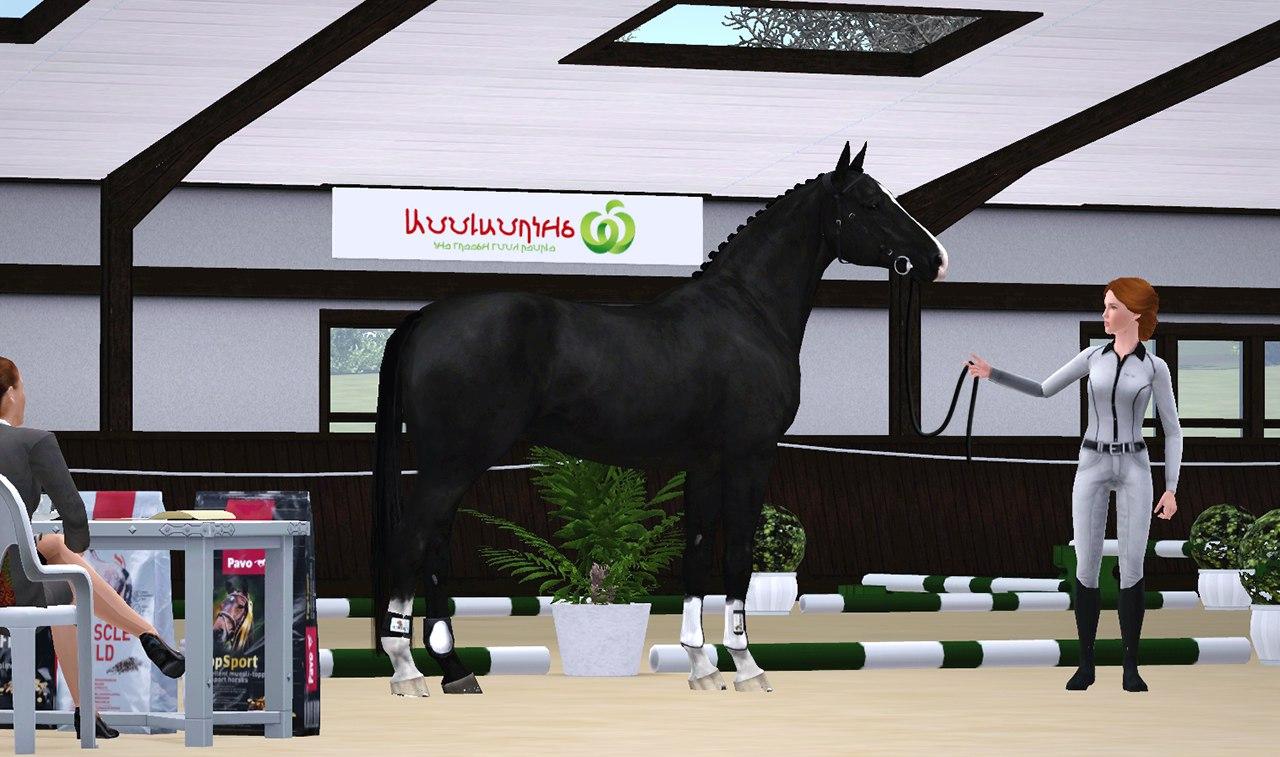 Регистрация лошадей в RHF 2 - Страница 4 F9rx8QFc7B4