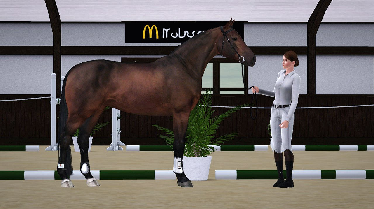 Регистрация лошадей в RHF 2 - Страница 4 RswE5UupP4w