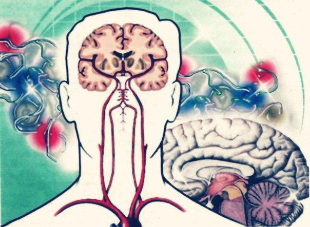 Препараты улучшающие венозный отток головного мозга