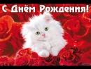 Анечка с Днём Рождения!