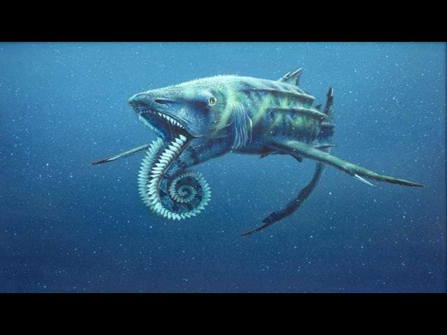 Самые опасные животные океана Морские глубины Документальный фильм HD