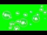 Bubbles. Green Screen. Full HD. Free