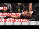 Best UFC Knockouts of 2017 So Far - TOP 5 best ufc knockouts of 2017 so far - top 5