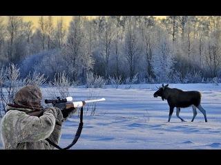 Охота на лося Колымский лось 750кг. Самый большой лось в мире.