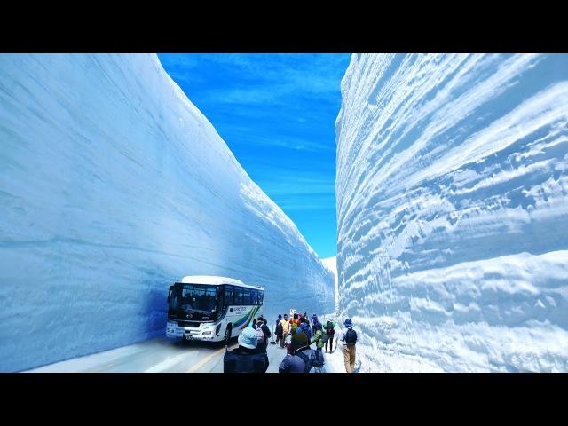 Epic High Deep Snow Removal Mega Machines: Grader, Truck, Loader, Bulldozer, Excavator, Tank