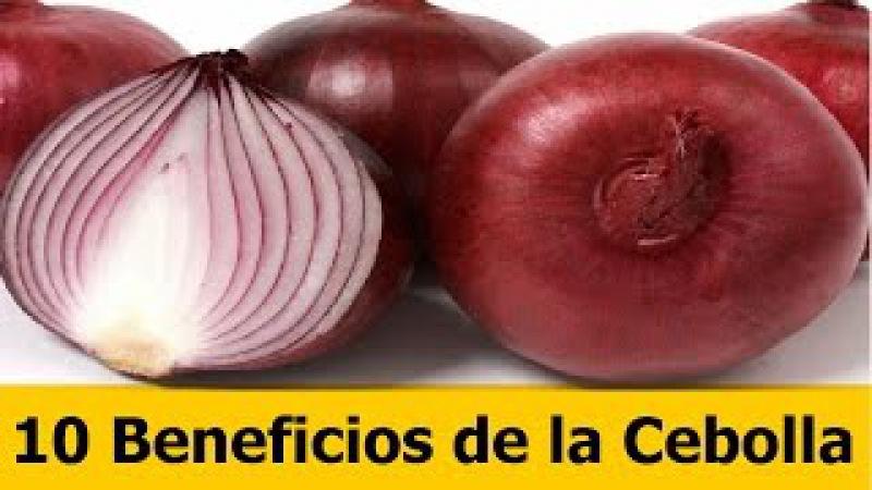 Sorprendentes Beneficios de la Cebolla para la Salud -10 Beneficios poco Conocidos de la Cebolla