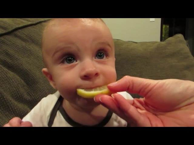Baby eat lemon for the first time ooou soo cute