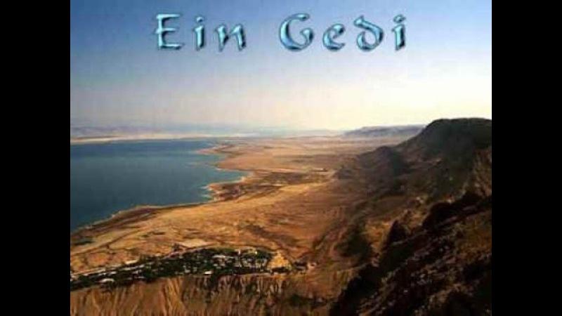 G.E.N.E. - En Gedi (Эйн-Геди)