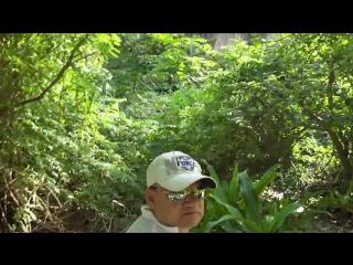 Тайланд - Пхукет (Видео-ролик от Игоря Журавлёва-Гримм)