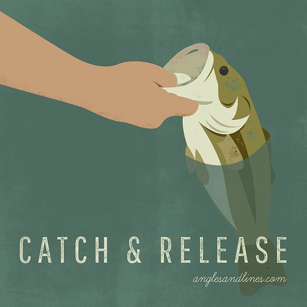 dating catch and release Catch and release on the other end of the spectrum is the dater who practises the 'catch and release' this is a move favoured by those who enjoys the 'chase' part of a relationship, the first.