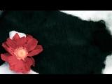 Короткометражный фильм Улыбка природы Берегите природу и не засоряйте экологию!