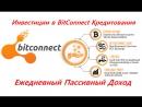 Bitconnect - Ежедневный Пассивный Доход