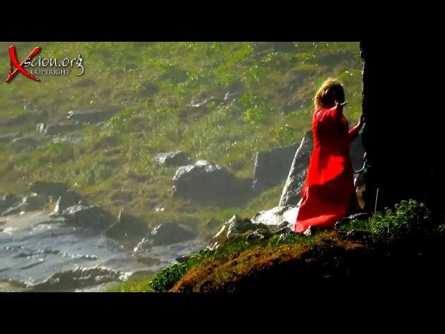 Lady in Red - Modern Talking instrumental. Night Princess Harmony travel. Korg Pa900 Style remix