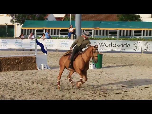 Portuguese National Championship Working Equitation Speed Trail GodinhoTrigo