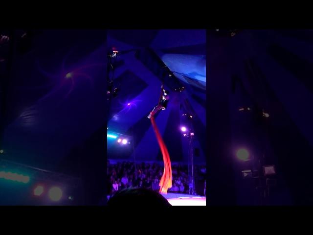 Подарок от радио Маяк.цирк.шапито.воздушная гимнастка