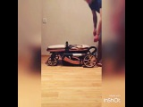 kids_pram video