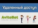 Удаленный доступ для пользователей АвитоБот и ЮлаБот