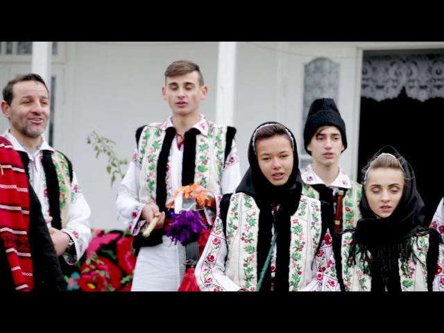 Grup vocal Doina Costestilor - Veseleste-te, Domn, Bunu'