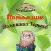 Питомник хорьков MoccoGrace. Клуб Русский хорёк