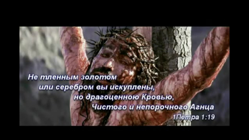 Апостол Петр и нуга бест