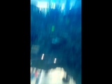 Прогулка в лифте-аквариуме