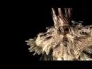 Король Гвин - Владыка Пепла