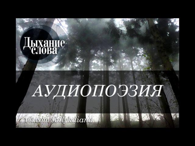 4. Стихи из романа Взгляд в темноту - автор Светлана Казакова