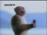 1980's Sony Walkman Commercial from Japan