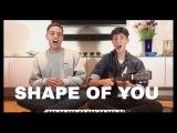 SHAPE OF YOU (Ed Sheeran) - Jack and Joel