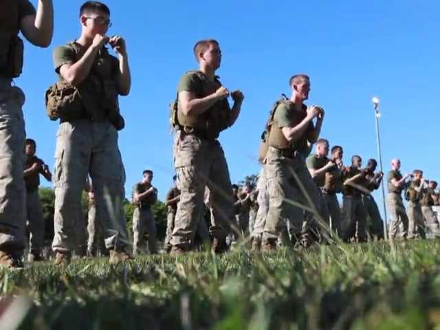 MRF-D Marines Fight for Green Belts in MCMAP (Marine Corp Martial Arts Program)