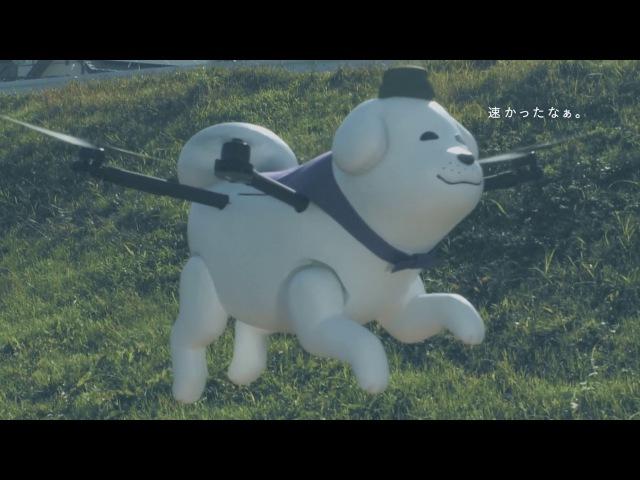 Yukimaru Walking in the Sky