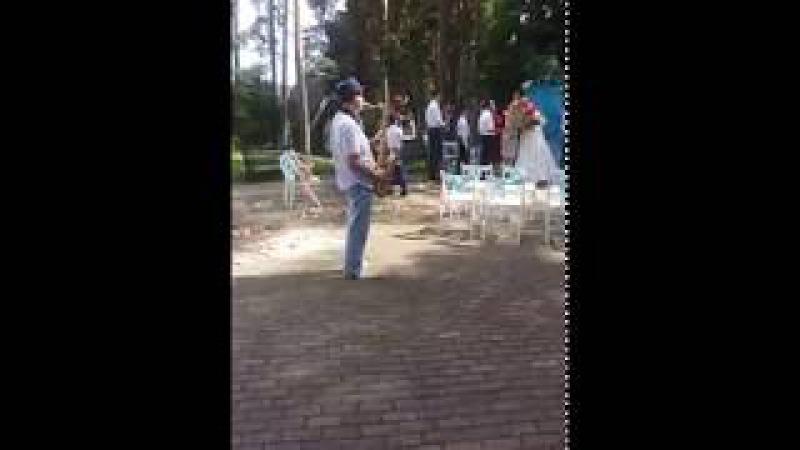 Саксофон на свадьбу - Яровиков Владимир 8 904 971 34 45 Миасс