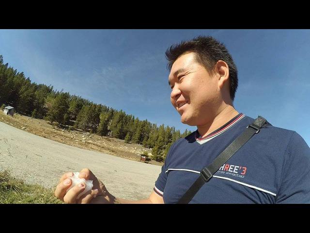 Vlog 4. Путешествие по США. Сиэтл - Нью Йорк. Третий день путешествия. Йелоустонский парк.