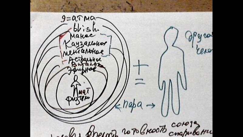Video 424 естественно ли человеку быть одному 2 половзрелое спаривание номенклатура индуса