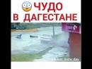 авария в Дагестане. чудо,что все живы!