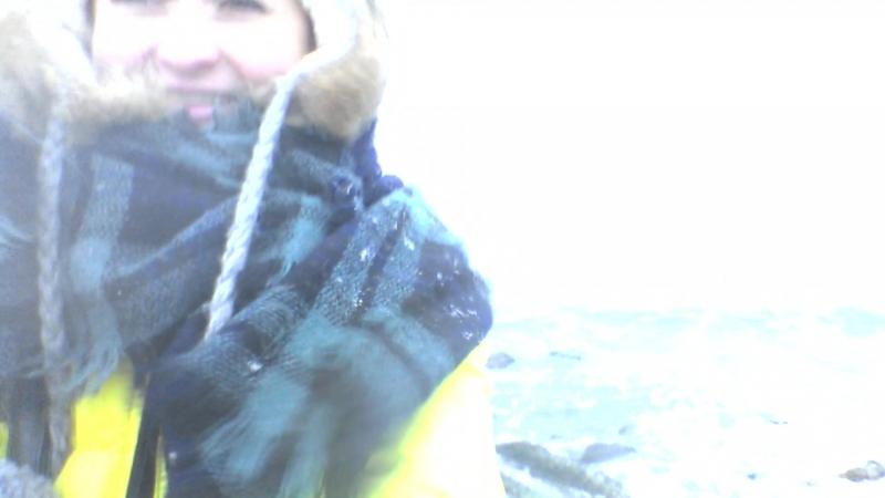 Gotland bawl