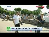 Быдло ВДВшник ударил журналиста НТВ День ВДВ 2017 ПС бот