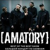 18 ноября   AMATORY - The Best Show   паб Брюгге