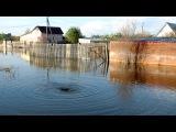 Ишимские сады после наводнения - вода уходит под землю